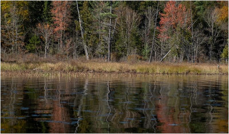 Adirondacks Forked Lake Paddle 7 October 2019