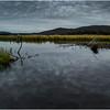 Adirondacks Cedar River Flow September 2015  Early Morning 5