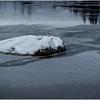 Adirondacks Lake Durant 3 December 2016