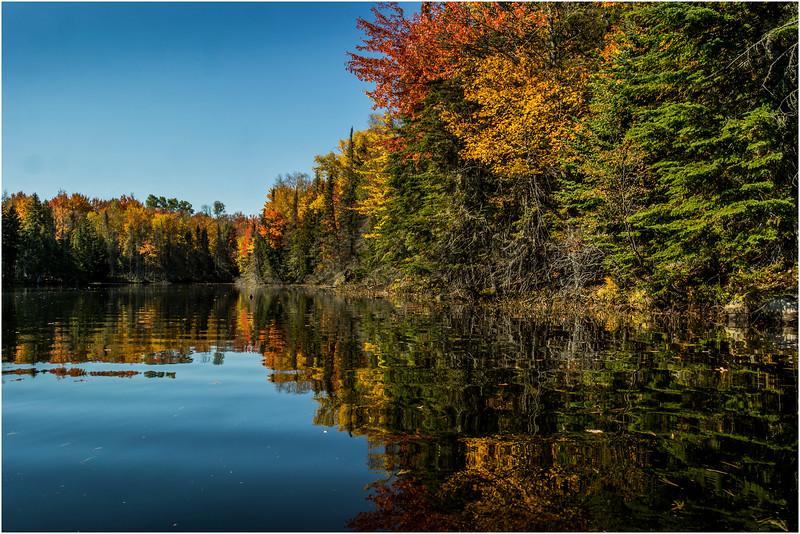 Adirondacks Lake Abanakee October 2015 Shoreline 1
