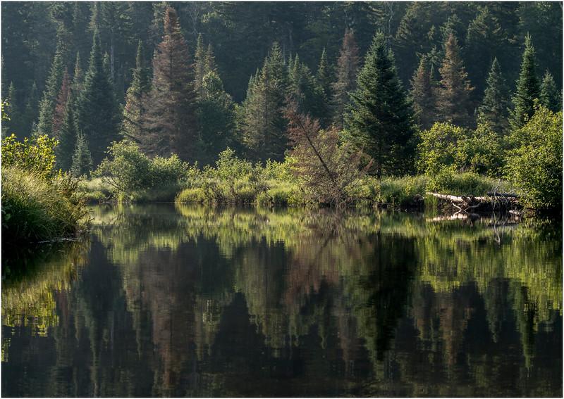 Adirondacks Cedar River Flow East Inlet July 2013