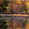 Adirondacks Bog River October 2011 Fall Foliage and Reflection and Shoreline