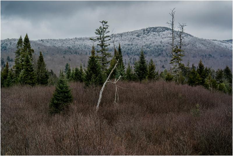 Adirondacks Long Lake November 2015 Blue Ridge 2