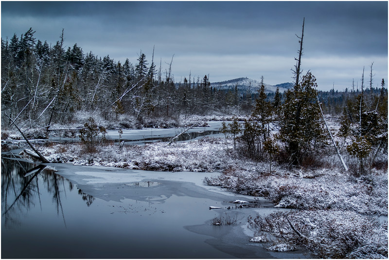 Adirondacks Saranac Lake Tributary 1 December 2016