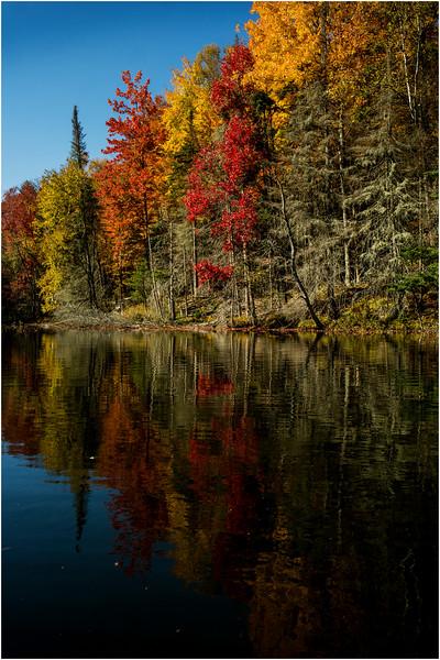 Adirondacks Lake Abanakee October 2015 Shoreline 8