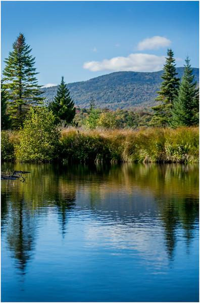 Adirondacks Cedar River Flow Shoreline 22 September 25 2016
