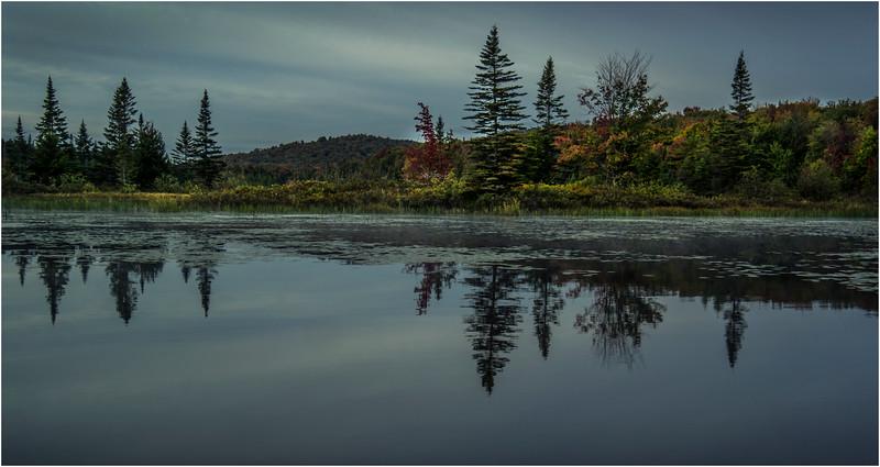 Adirondacks Cedar River Flow September 2015  Early Morning 2
