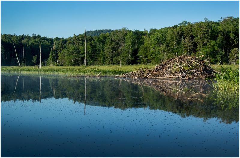 Adirondacks Moose River 7 July 2016