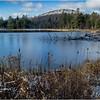 Adirondacks Long Lake November 2015 Wetlands at Sabattis Road 6