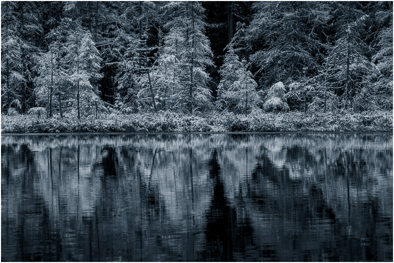 Adirondacks Follensby Clear Pond 7 DUO December 2016