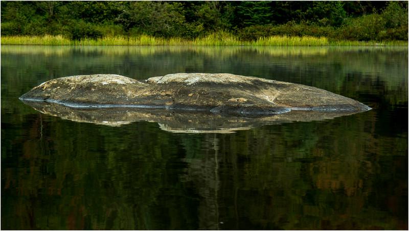 Adirondacks Cedar River Flow September 2015  Boulder and Shoreline