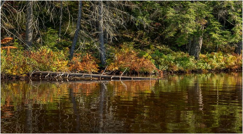 Adirondacks Nicks Lake 19 September 2019