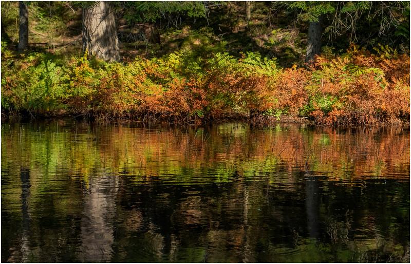 Adirondacks Nicks Lake 23 September 2019