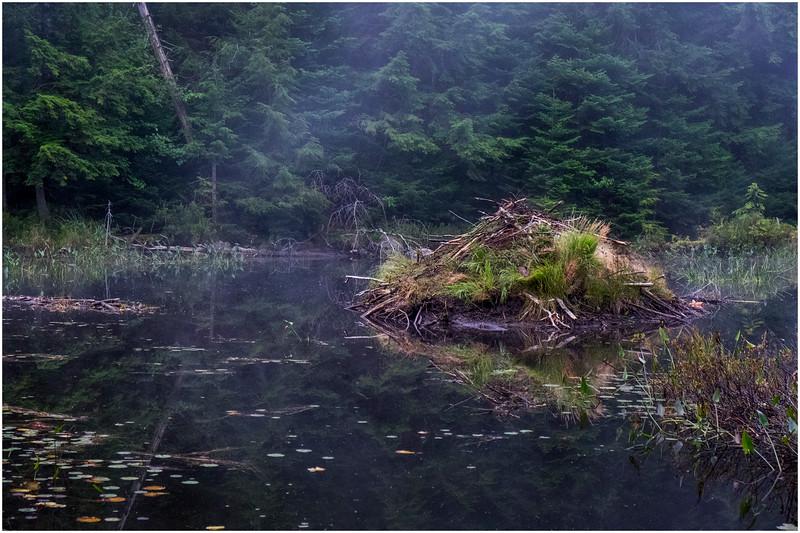 Adirondacks Cary Lake Morning Mist 46 September 2017