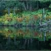 Adirondacks Nicks Lake 32 September 2019