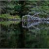 Adirondacks Nicks Lake 20 September 2019