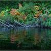 Adirondacks Nicks Lake 28 September 2019
