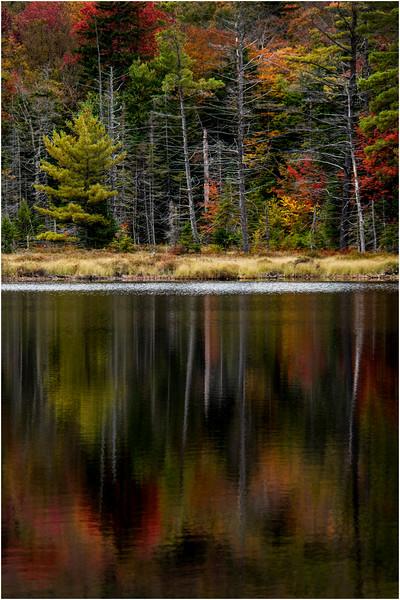 Adirondacks Whitney Wilderness Round Lake Shore and Reflection 9 September 2013