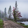 Adirondacks Cary Lake Morning Mist 62 September 2017