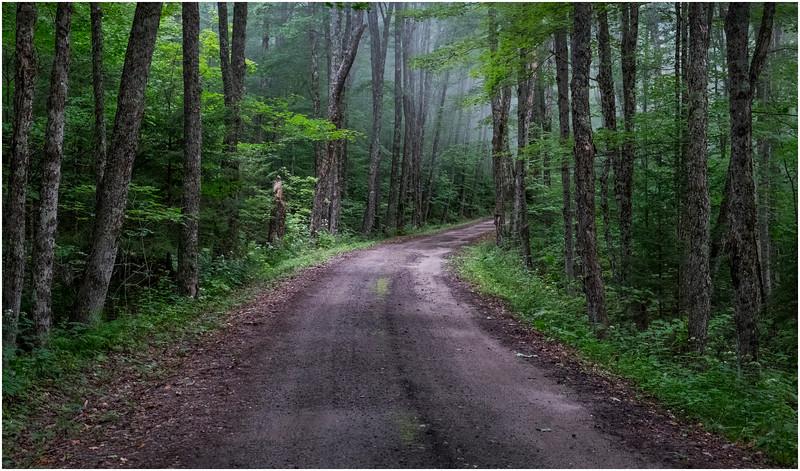Adirondacks Cary Lake Morning Mist 88 September 2017