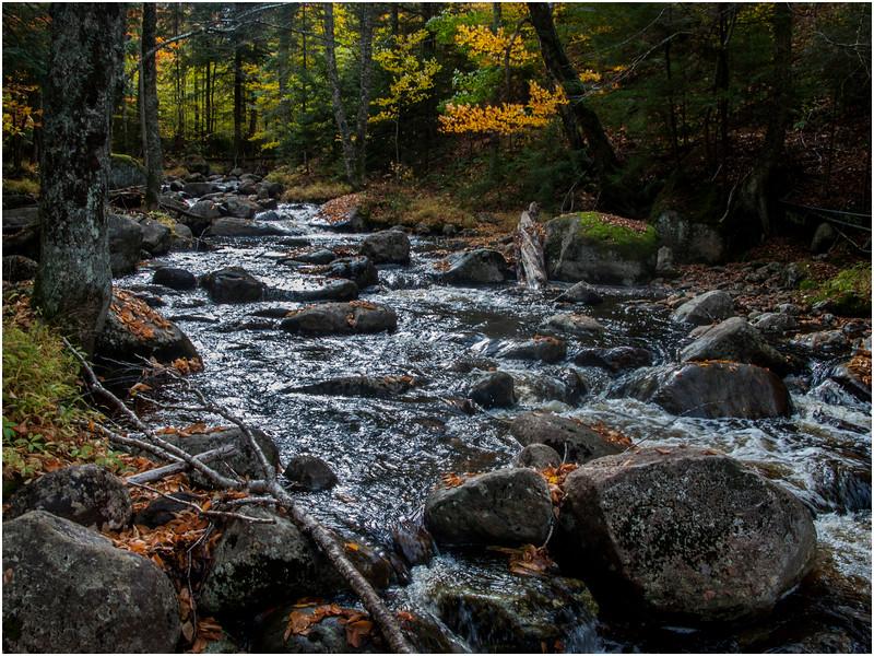 Adirondacks Raquette Lake Area Stream by Rt 28 3 October 2009