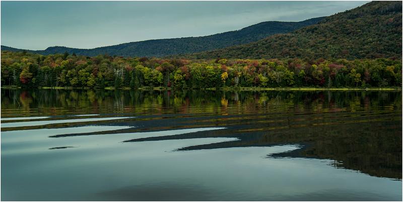 Adirondacks Cedar River Flow September 2015  Shoreline 16
