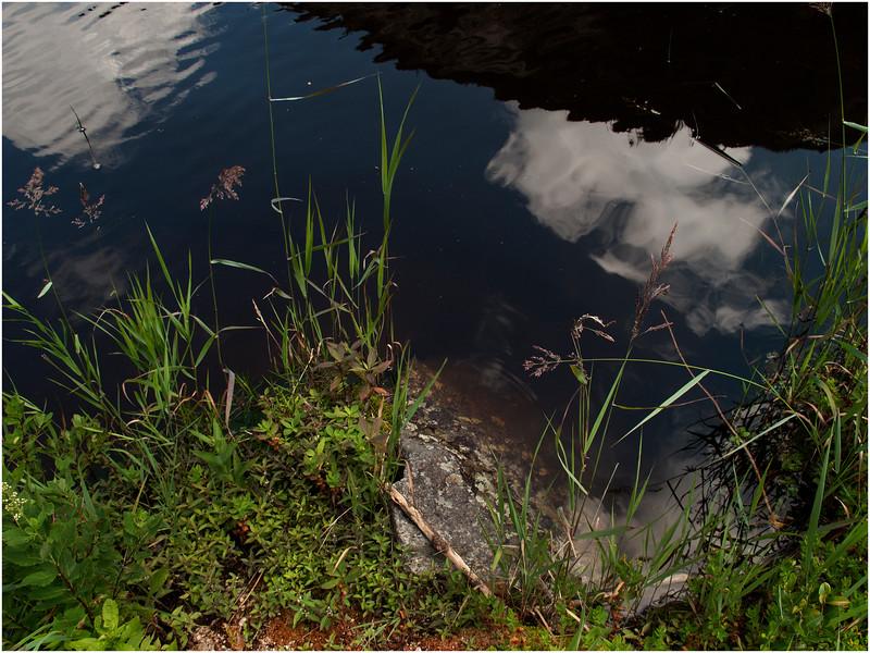 Adirondacks Avalanche Lake Shoreline Colden Reflection July 2012