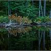 Adirondacks Nicks Lake 21 September 2019