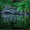 Adirondacks Nicks Lake 27 September 2019