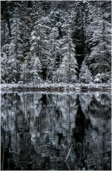 Adirondacks Follensby Clear Pond 9 December 2016