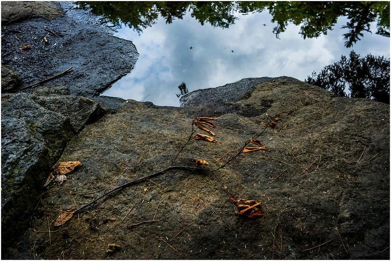 Adirondacks Round Lake Whitney Wilderness Outlet Stream 9 July 2016