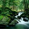 Adirondacks Classics Falls on Gull Brook near Crane Pond 4x5 circa September1996
