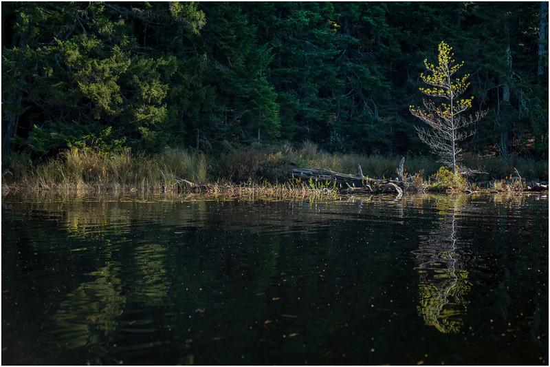 Adirondacks Forked Lake Paddle 5 October 2019