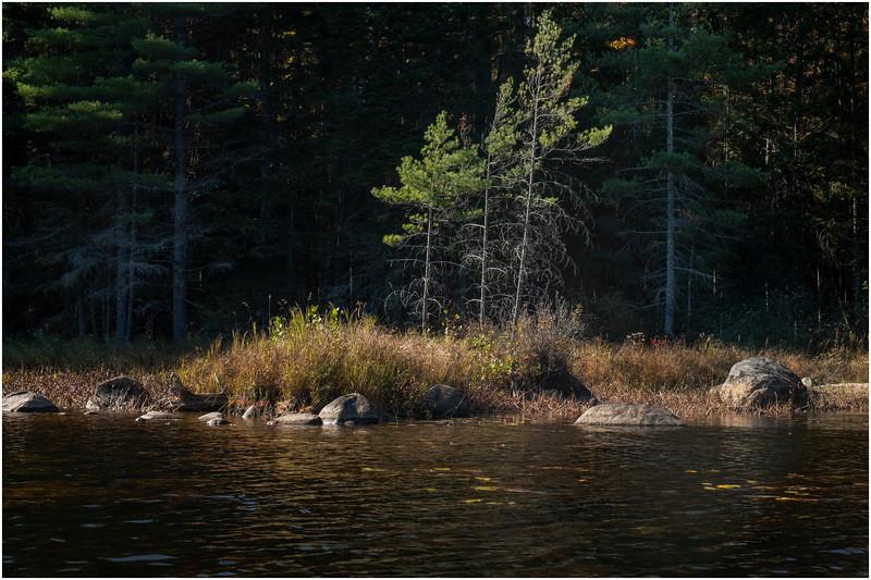 Adirondacks Forked Lake Paddle 19 October 2019