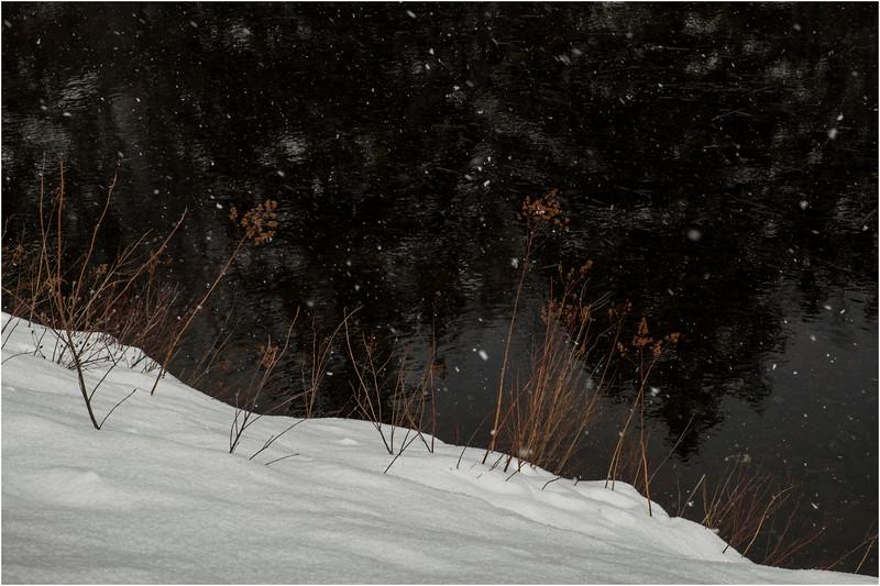 Adirondacks Arietta Shoreline while Snowing 2 March 2018