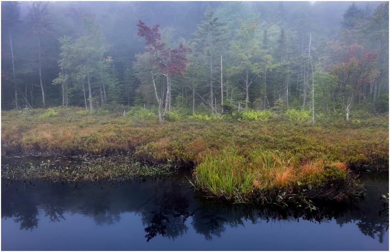 Adirondacks Cary Lake Morning Mist 30 September 2017