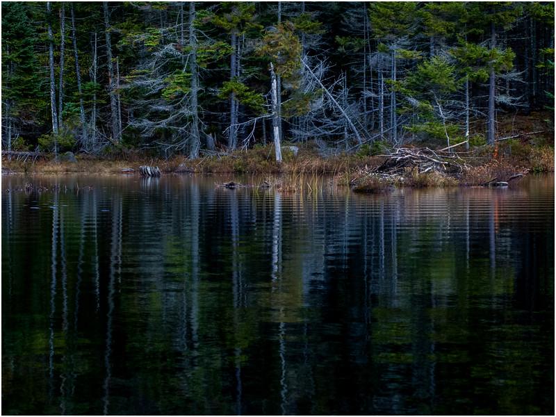 Adirondacks Utowana Lake Shore 5 October 2009