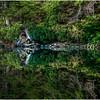 Adirondacks Moose River Shore 23 July 2016