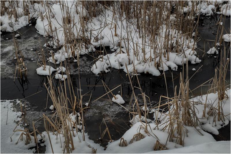 Adirondacks Raquette Lake 11 March 2018