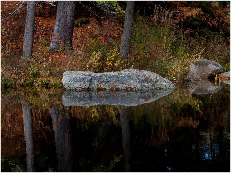 Adirondacks Utowana Lake Shore 1 October 2009