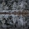 Adirondacks Follensby Clear Pond 8 December 2016