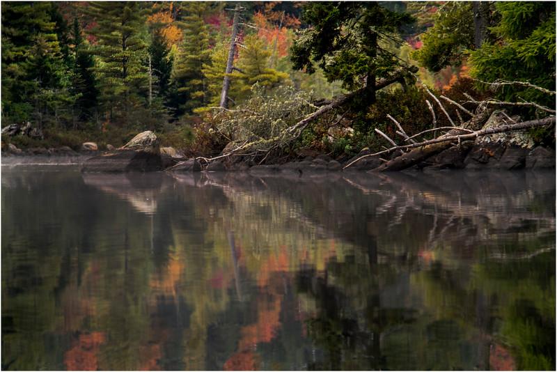 Adirondacks Whitney Wilderness Round Lake Color Shoreline 3 September 2013
