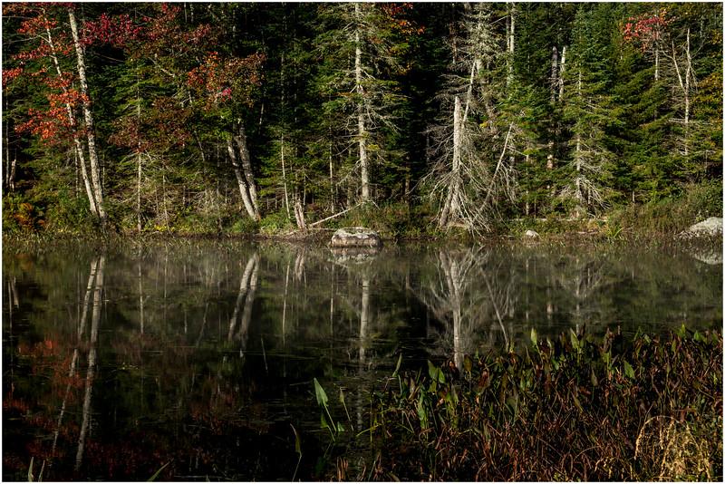Adirondacks Lake Durant Morning Light 22 September 25 2016