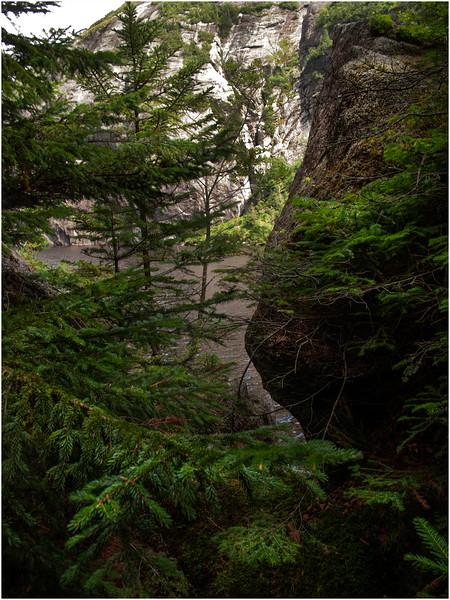 Adirondacks Avalanche Lake Shoreline Trail July 2012