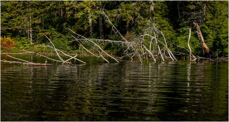 Adirondacks Nicks Lake 2 September 2019