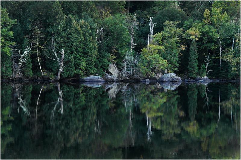 Adirondacks Lower Cascade Lake September 2015 Shoreline 1