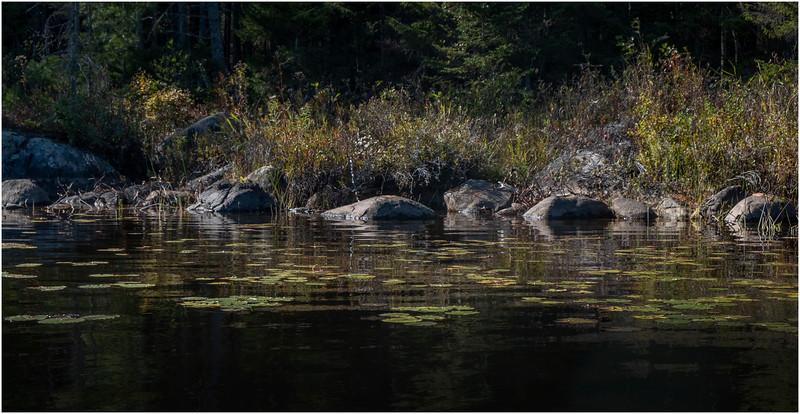 Adirondacks Forked Lake Paddle 21 October 2019