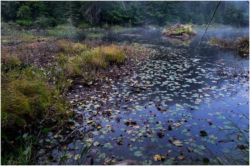 Adirondacks Cary Lake Morning Mist 38 September 2017