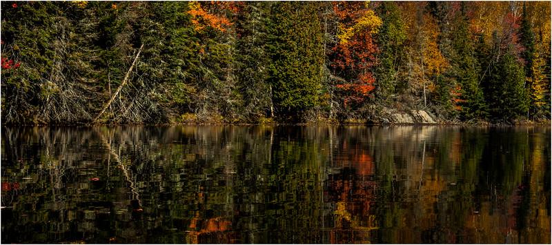 Adirondacks Lake Abanakee October 2015 Shoreline 15