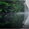 Adirondacks Newcomb Lake Shore Detail 24 July 2017